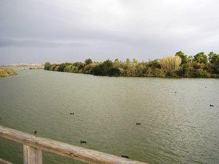 Lagoa dos Salgados (Golf)
